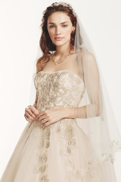 A Romantic Bride Jewel Tulle wedding dress with Venise Lace detail David's Bridal Champagne
