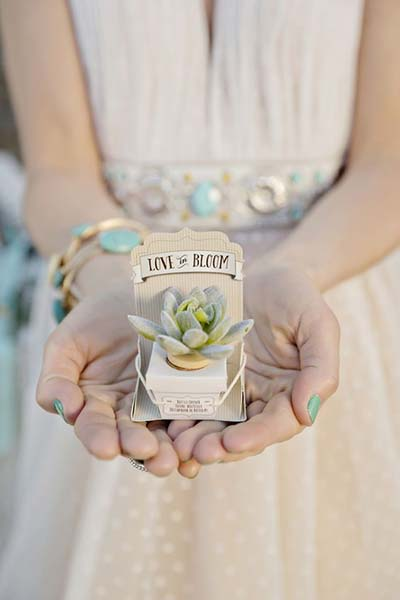 Unique and Earthy Wedding Favors