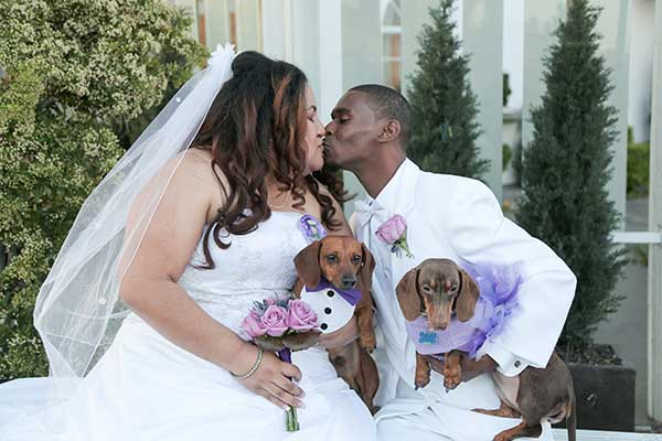 Wedding Venues that Allow Pets in Las Vegas