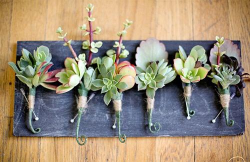 Succulent Boutonniere | Wedding Flower Ideas | 2018 Wedding Trends